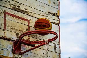 Фото Баскетбол Мяч Спорт