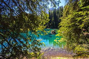 Обои Италия Озеро Ветки Lake Carezza Природа