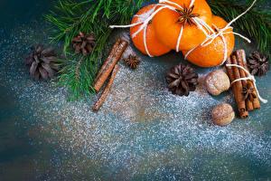 Фото Новый год Цитрусовые Мандарины Корица Орехи Ветвь Шишки Пища