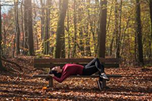 Фотография Парки Осенние Скамейка Спящий Leslie Природа Девушки