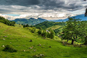 Картинки Румыния Пейзаж Гора Поля Луга Деревьев Облака Brasov Природа