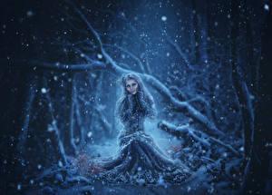 Картинки Зима Платье Снежинка Фэнтези Девушки