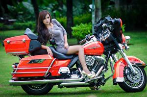 Обои Harley-Davidson Азиатки Мотоциклы Девушки фото