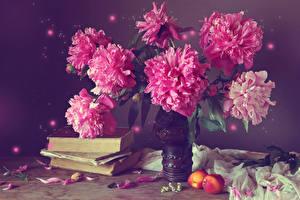 Фотография Натюрморт Пионы Персики Книга Ваза Розовый Цветы