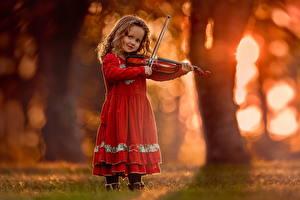 Фото Скрипка Девочка Платье Дети