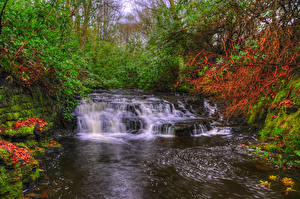 Картинка Англия Реки Водопады Мох Upper Anglezarke waterfall Lancashire Природа