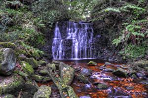 Фото Англия Парки Водопады Камень Мох Rivington Природа