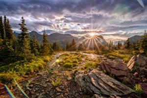 Обои Штаты Парки Горы Камни Пейзаж Ели Облачно Лучи света Glacier National Park Природа
