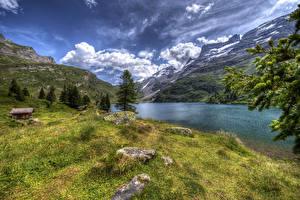 Фотографии Швейцария Пейзаж Озеро Гора Камень Облачно Траве Engstlensee Природа