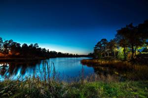Картинки Пейзаж Речка Деревья Трава Ночные Природа