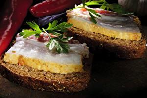Фотография Хлеб Бутерброды Сало Листья Еда