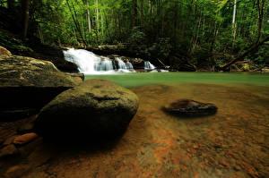 Картинка Водопады Речка Камень Лес Природа