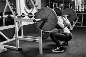 Картинка Фитнес Штанга Тренировка crossfit weight leg exercises gym Девушки