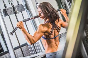 Фотография Бодибилдинг Спина Физические упражнения workout bodybuilder gym Девушки