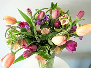 Фото Букет Тюльпаны Морозник цветок