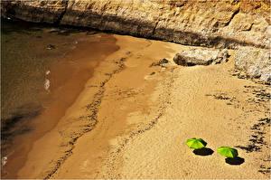 Обои Побережье Пляж Зонт Сверху Природа