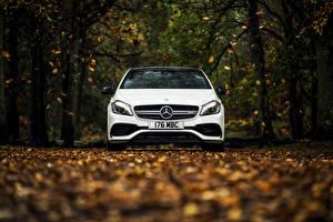 Фотография Mercedes-Benz Осенние Белый Спереди AMG A-class W176 Машины