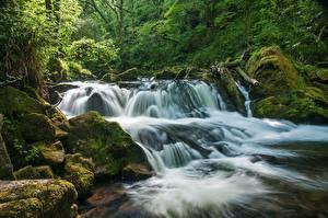 Фотография Англия Водопады Реки Леса Golitha Falls River Fowey Cornwall Природа