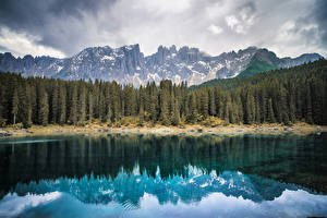 Фото Италия Леса Горы Озеро Пейзаж Побережье Lake Carezza Bozen Природа