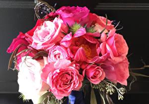 Обои Букет Роза Пионы Розовый Цветы