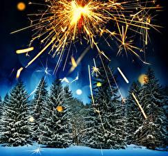 Фотографии Зима Леса Фейерверк Ель В ночи Природа
