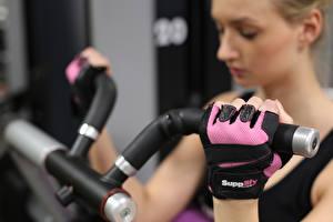 Фото Фитнес Крупным планом Руки Перчатках Тренировка спортивные Девушки