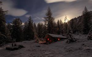 Фото Швейцария Дома Зимние Лес Ели В ночи Снегу Альпы Природа