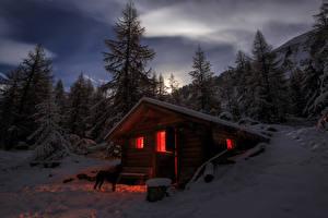 Обои Швейцария Зима Ель Ночь Снег Альп Природа
