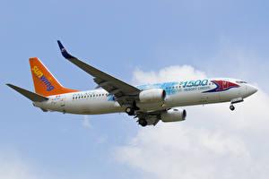 Картинка Самолеты Пассажирские Самолеты Boeing 737-800