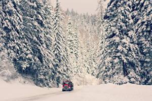 Обои Зима Дороги Грузовики Снега автомобиль