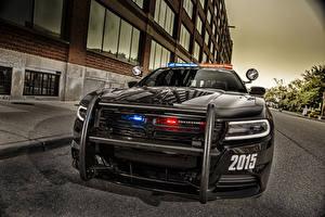 Обои Dodge Спереди Черных Полицейские 2015 Charger Pursuit Автомобили