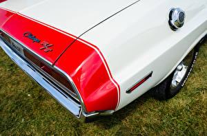 Фотографии Додж Крупным планом 1970 Challenger машины