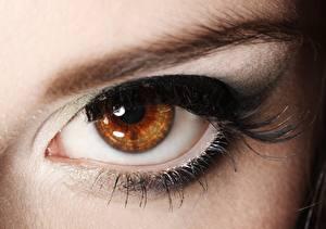 Картинка Глаза Крупным планом Ресница Макияж Девушки