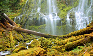 Обои США Водопады HDR Мох Alder Springs Oregon Природа фото