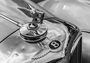 Картинка Старинные Логотип эмблема Бентли Крупным планом Автомобили