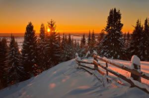 Фотография Леса Зима Рассветы и закаты Забор Снег Природа