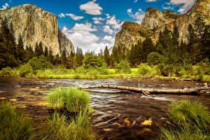 Обои США Парки Горы Реки Пейзаж Йосемити Трава Природа фото