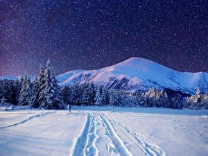 Картинка Сезон года Зимние Горы Леса Небо Звезды Пейзаж Снег Ель Ночные Природа