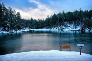 Фото Америка Озеро Зимние Лес Скамья Снеге Goldwater Lake Prescott Arizona Природа