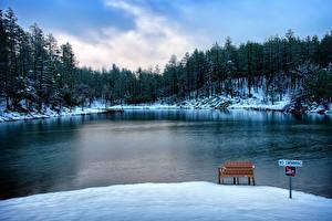 Фото США Озеро Зимние Лес Скамья Снеге Goldwater Lake Prescott Arizona Природа