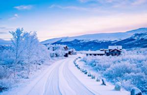 Фото Пейзаж Сезон года Зима Дороги Дома Снег Кусты Природа