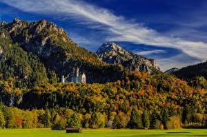 Фотография Германия Горы Замки Леса Нойшванштайн Небо Бавария Деревья Природа