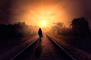 Фотографии Железные дороги Рассветы и закаты Силуэт