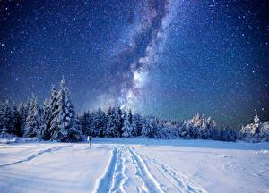 Картинки Зимние Леса Небо Звезды Снег Ель Ночь Природа