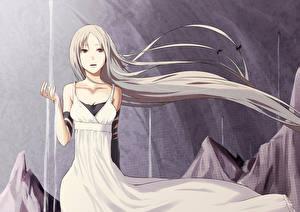 Pixiv Fantasia Волосы Платье Art Fallen Kings Rane  Девушки