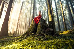 Фото Леса Платье Деревьев Мох Lizzy Gadd Woodland Magic Природа Девушки