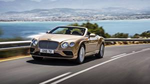 Фотография Bentley Кабриолета Роскошный Движение 2015 Continental GTC автомобиль