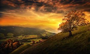 Картинка Швейцария Пейзаж Рассвет и закат Гора Луга Небо Деревья Облачно See-Gaster Canton of St. Gallen Природа