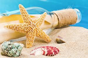 Обои Морские звезды Ракушки Бутылка Песок фото