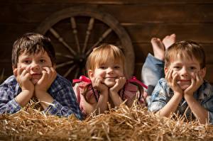 Фото Девочки Мальчики Втроем Взгляд Солома Дети